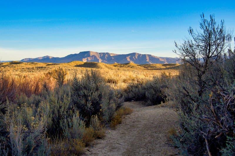 Desert Trail on a December Sunrise stock photo
