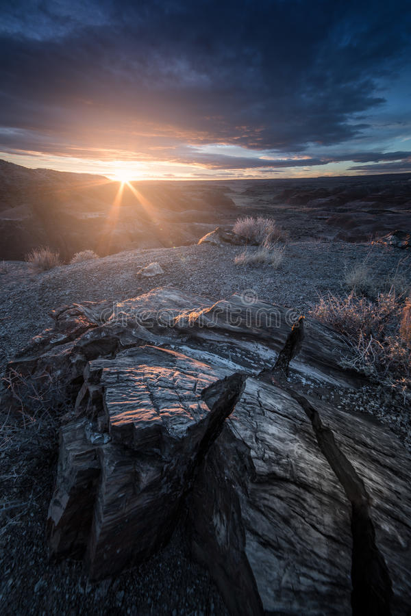 Desert Hills During Sunset with Cracked Petrified Wood in the Foreground in Petrified Forest National Park, Arizona stock photo