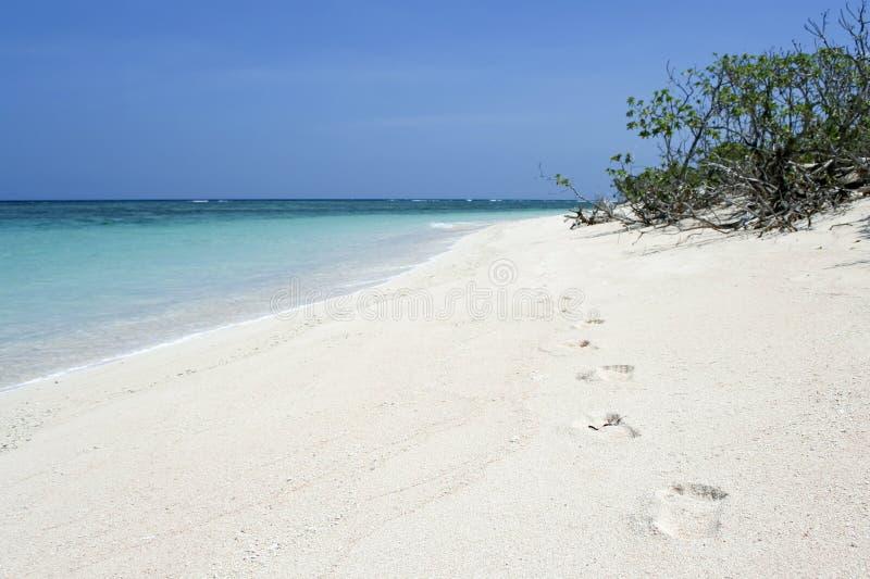 Desert island footprints beach background royalty free stock photos
