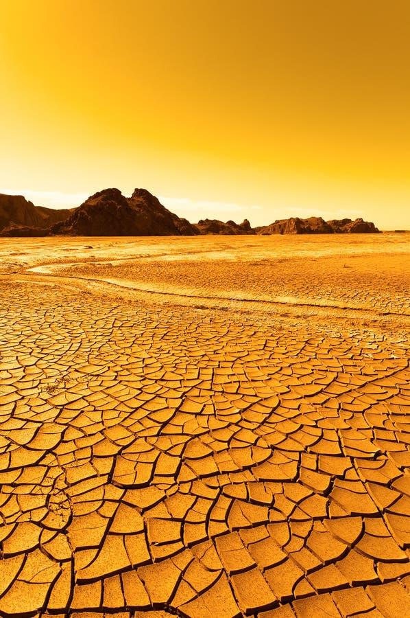 Desert landscape. Cracky soil background stock images