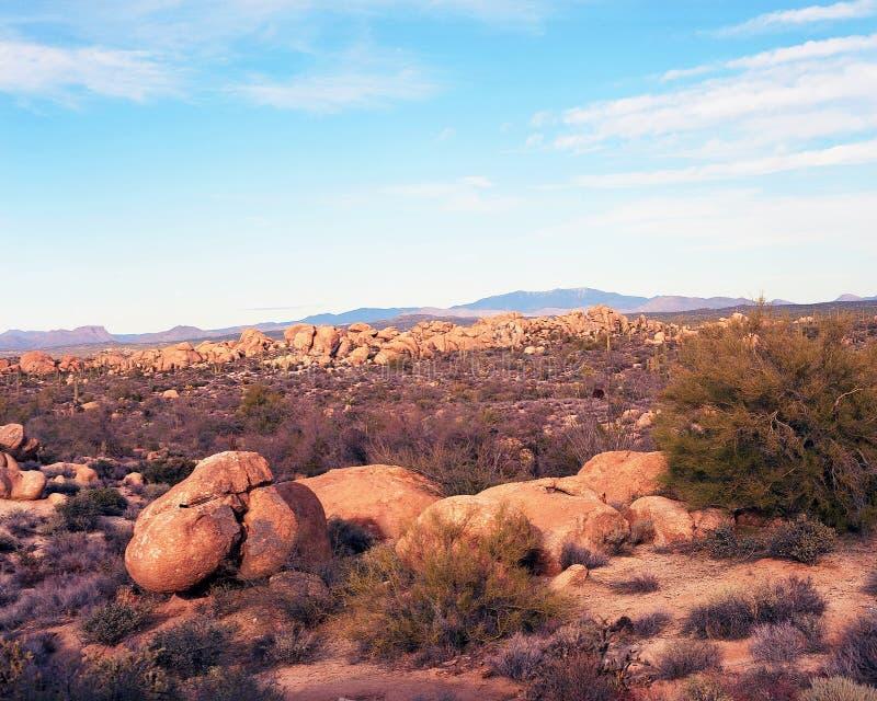 Download Desert Landscape stock image. Image of vegetation, open - 28470709