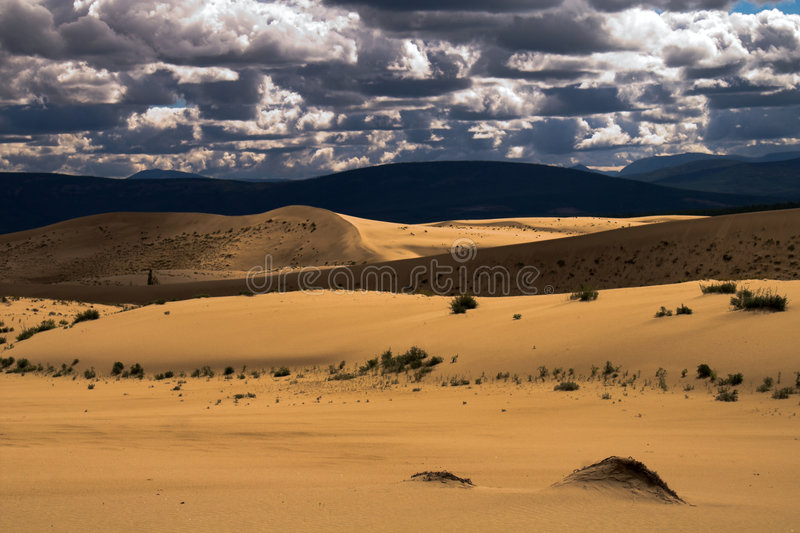 Desert landscape. 45 square kilometers of sands surrownded by swamps in eastern Siberia stock images