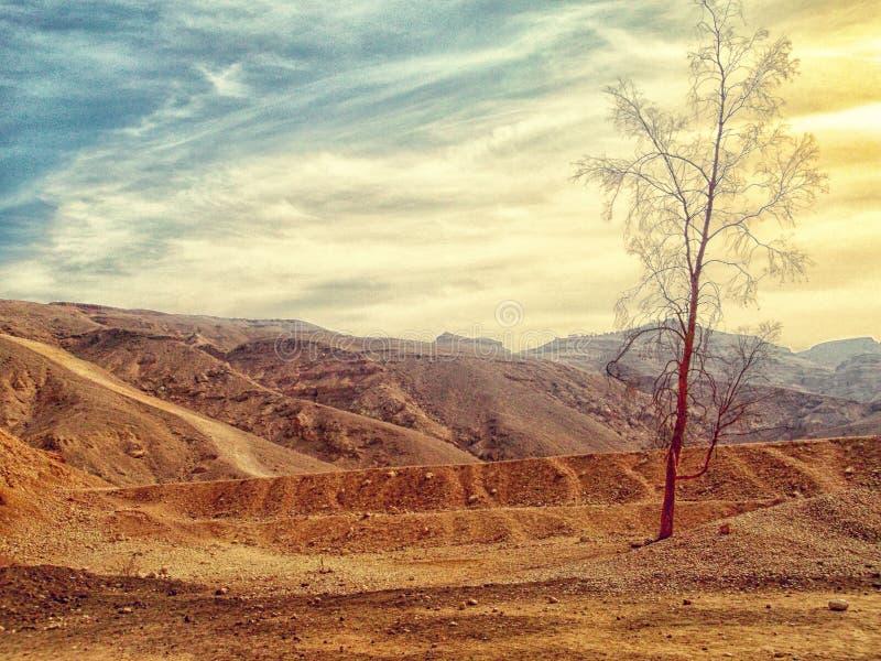 Desert Landscape Free Public Domain Cc0 Image