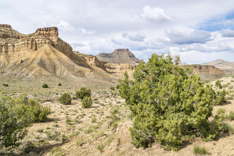 Desert landscape of Book Cliffs in eastern Utah stock images