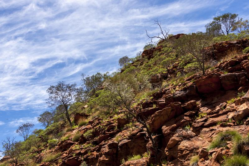 Desert landscape. Kings Canyon, Watarrka National Park, Northern Territory, Australia.  royalty free stock photography