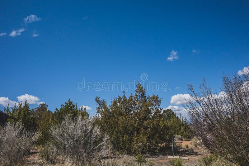 Desert landscape near Santa Fe, New Mexico, USA. Desert landscape with trees under blue sky and clouds, in Museum Hill, Santa Fe, New Mexico, USA royalty free stock photos
