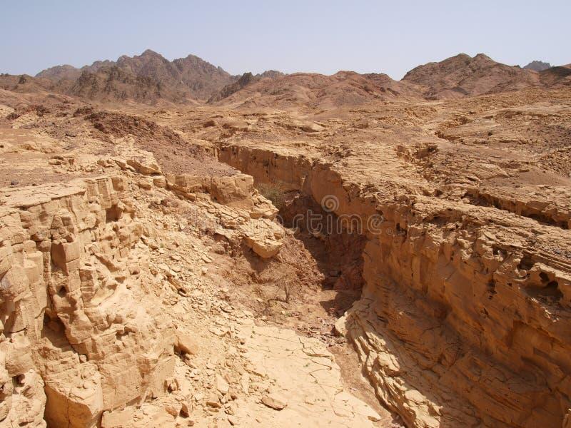 Desert landscape of Sinai Peninsula royalty free stock photo