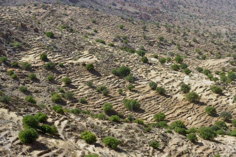 Desert landscape in Antiatlas Mountains royalty free stock images