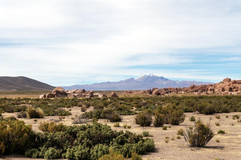 Desert landscapes with mountains in Bolivia at the dry season, dry vegetation is a natural background. Rocky and arid mountain landscape : Desert valley with royalty free stock photography