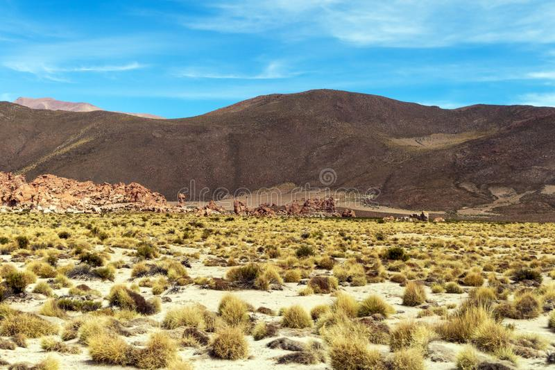 Desert landscapes with mountains in Bolivia at the dry season, dry vegetation is a natural background. Rocky and arid mountain landscape : Desert valley with stock photography