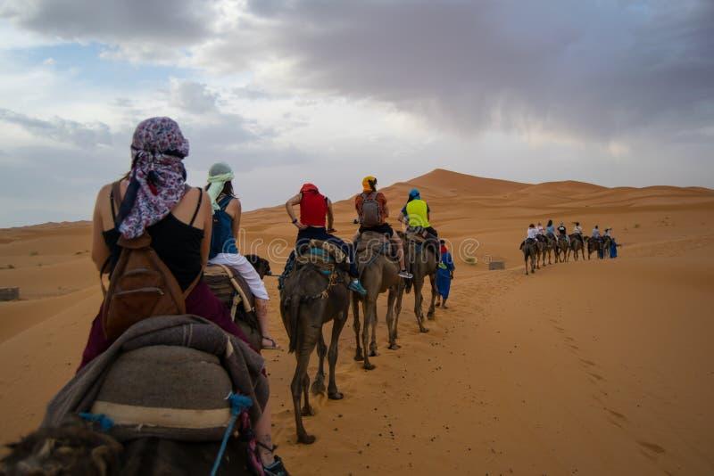 Desert - Marrakech royalty free stock photography