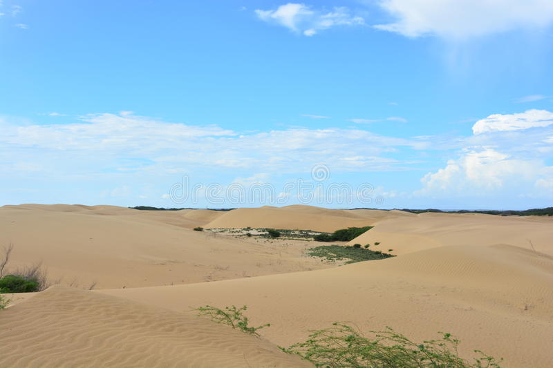 Desert of Medanos de Coro, Venezuela. Desert of Medanos de Coro, at the city of Coro, Venezuela stock photo
