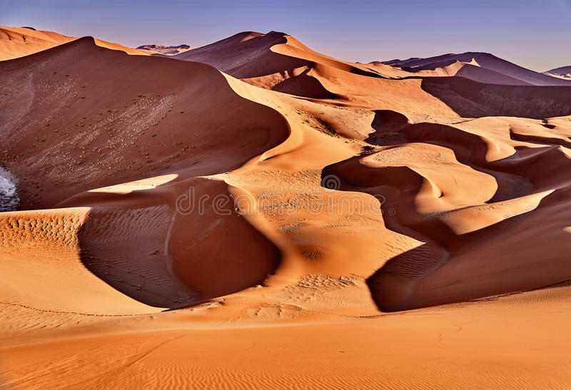 Desert of namib with orange dunes. Desert of namib with sand dunes and two gazelle stock image