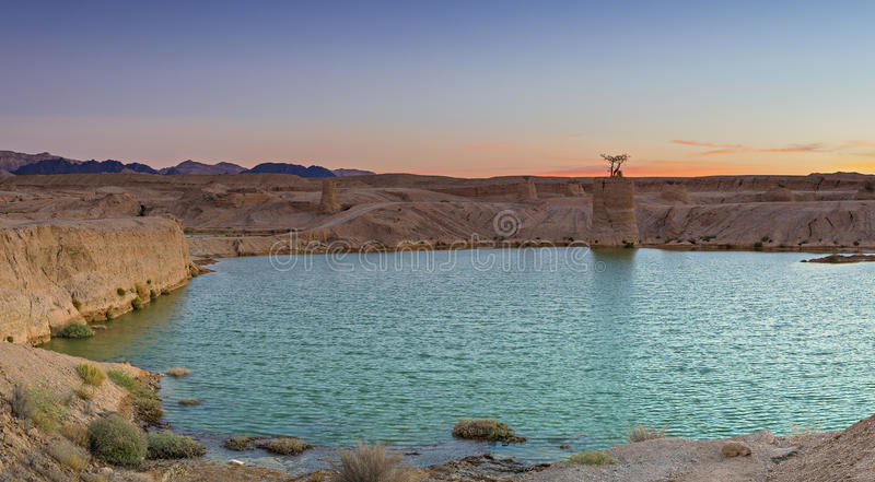 Desert of the Negev after tropical rain royalty free stock photography