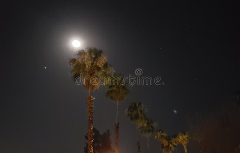 Desert night stock photos