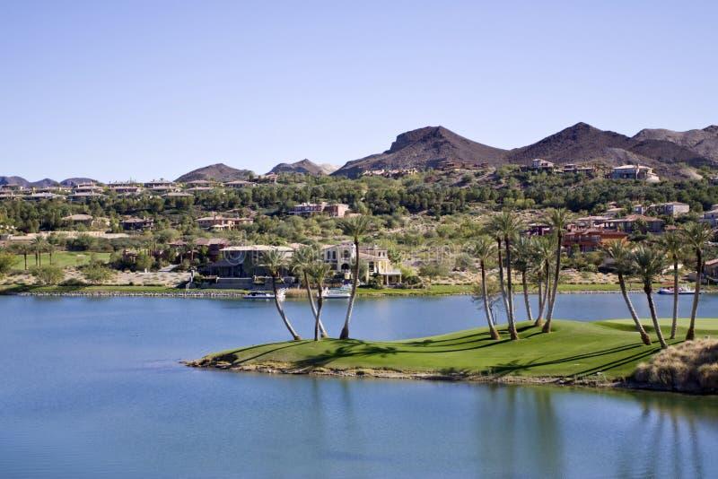Desert oasis royalty free stock photos