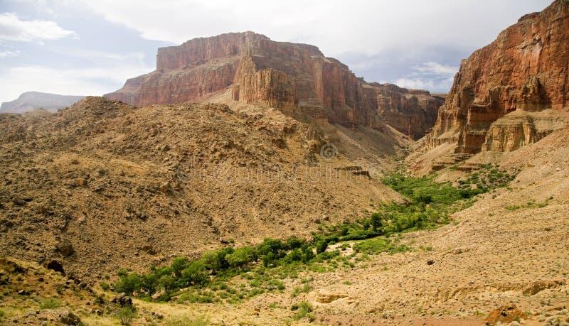 Desert Oasis stock photos
