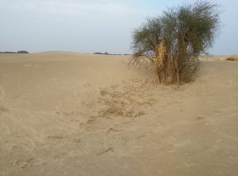 desert pakistan stock image