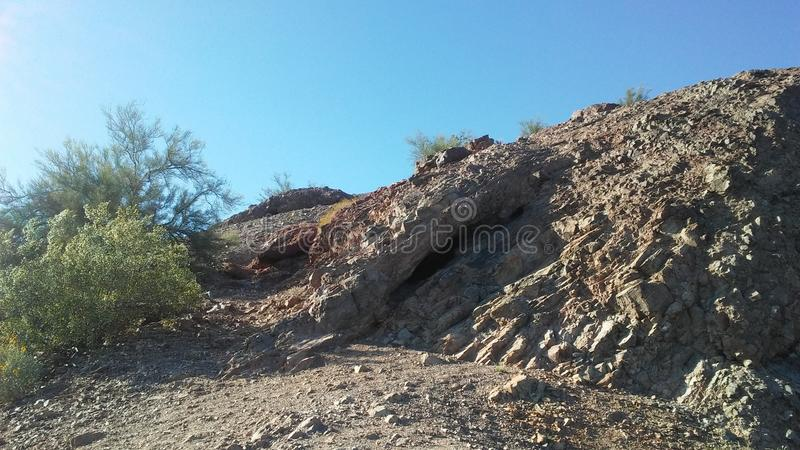Desert with Red Rocks and Blossoming Larrea Tridentata Plants in Phoenix, Arizona in Spring. Desert with Red Rocks and Blossoming Larrea Tridentata Plants in royalty free stock photo
