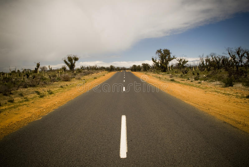 Desert Road. Sealed road in the deserts of Australia royalty free stock images
