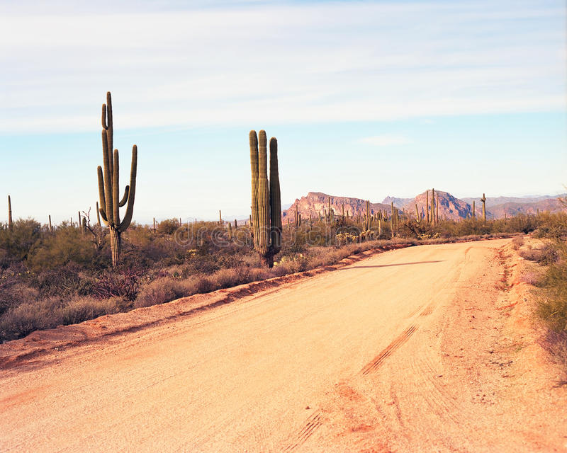 Download Desert Road stock photo. Image of desert, cactus, lines - 28470726