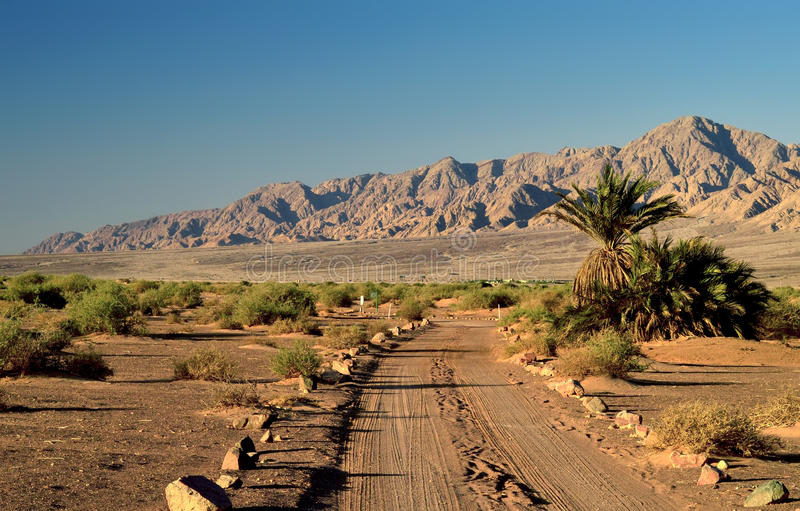 Desert road in valley of Arava, Eilat, Israel stock photography