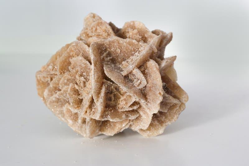 Desert rose gypsum crystal stock image