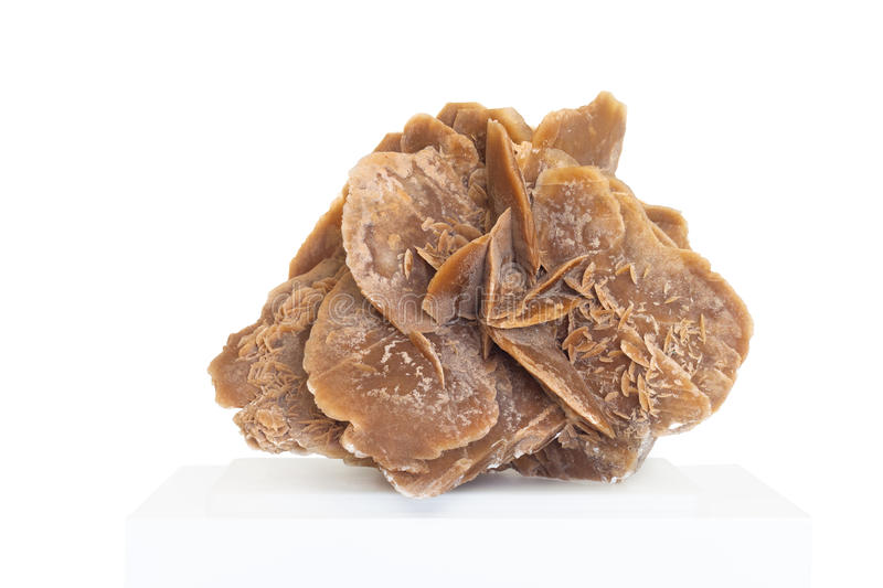 Desert rose,rock composed of gypsum, water and sand, formed in t royalty free stock photo