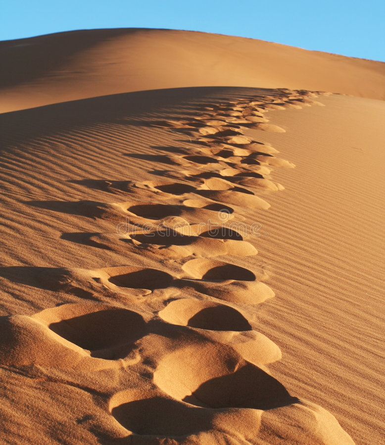 Desert Sahara. Footprints in sand desert Sahara royalty free stock photography