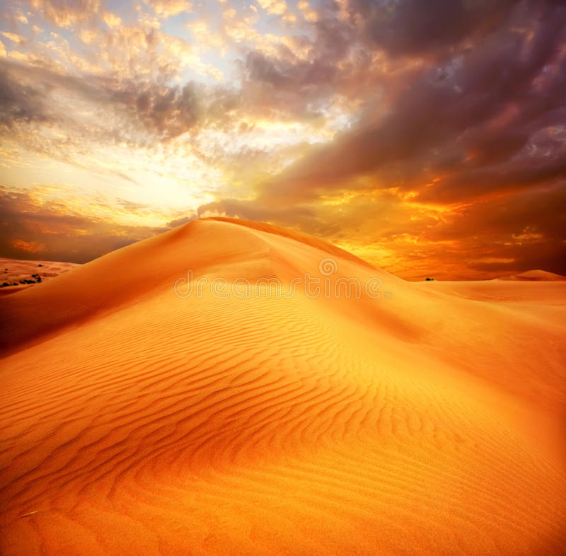 Desert. Sand Dune royalty free stock image