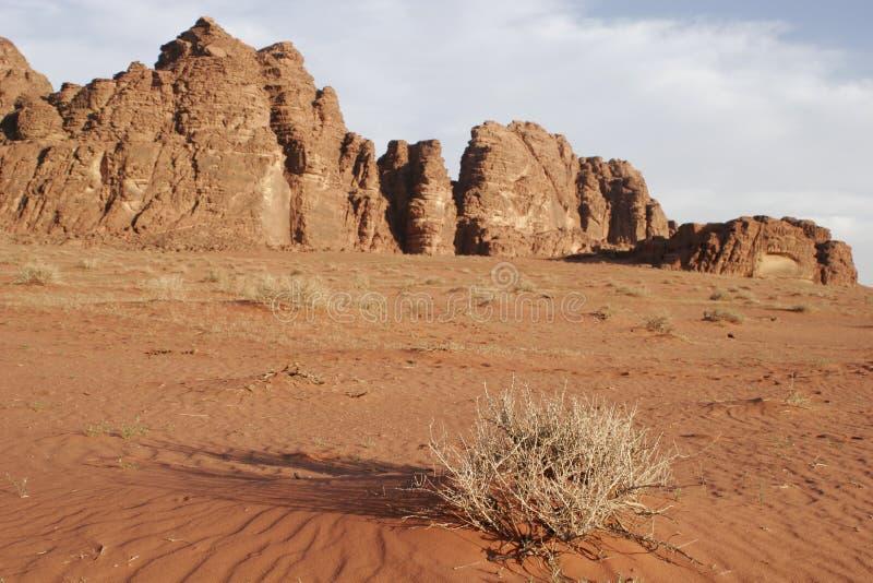 Desert scenery, Wadi Rum, Jordan, Middle East. Desert scenery in Wadi Rum, Jordan, Middle East royalty free stock images