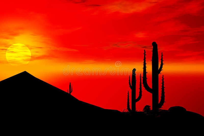 Desert silhouettes. Silhouettes of cactus and desert Southwest at sunset