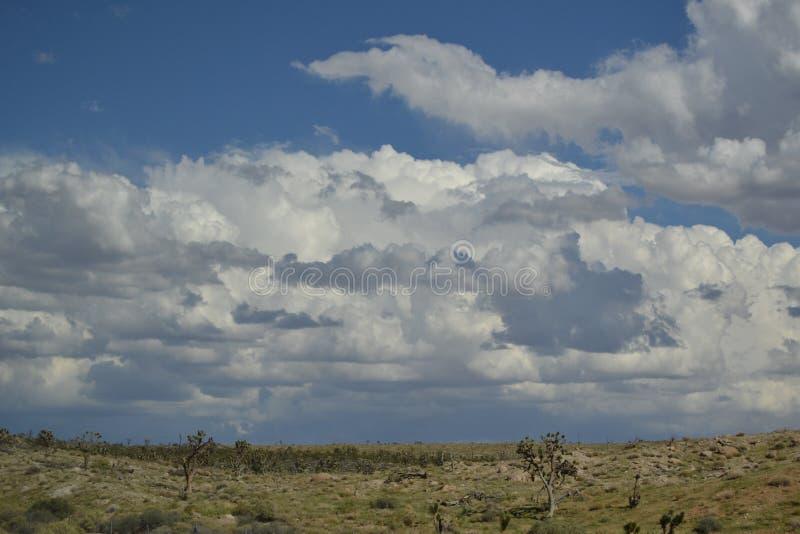 Desert Slope stock photos
