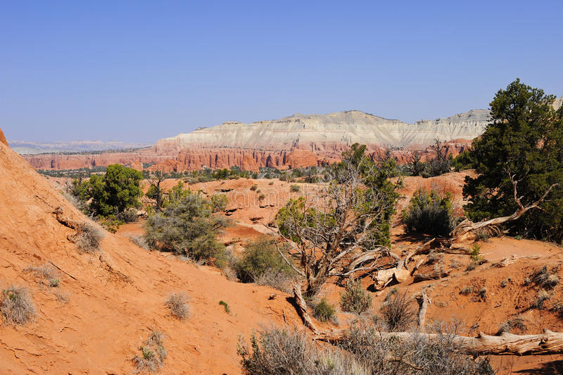 Desert southwest. View of red rocks and desert in the southwest stock photo