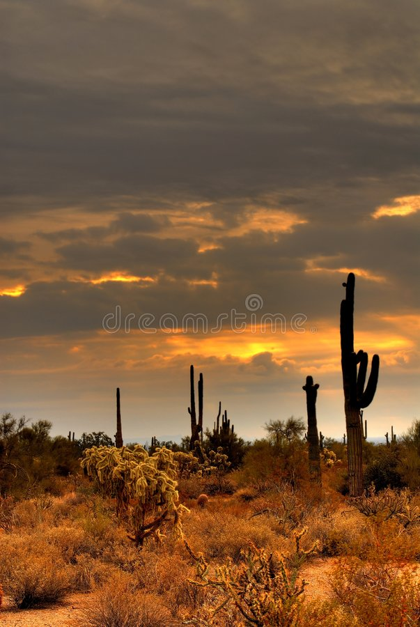 Desert Storm 31. Dramatic desert mountains with a storm approaching royalty free stock images