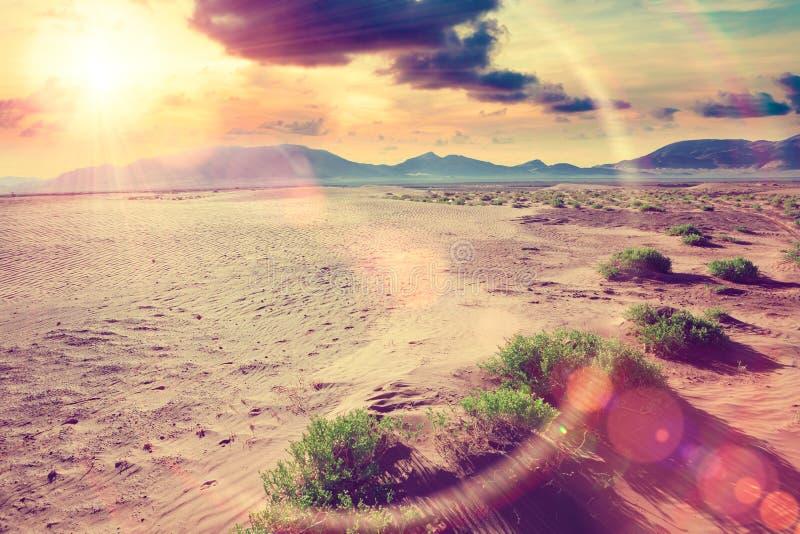 Desert sunrise.Desert travel adventures background stock photo