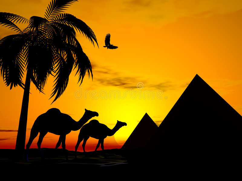 Desert sunset egypt vector illustration