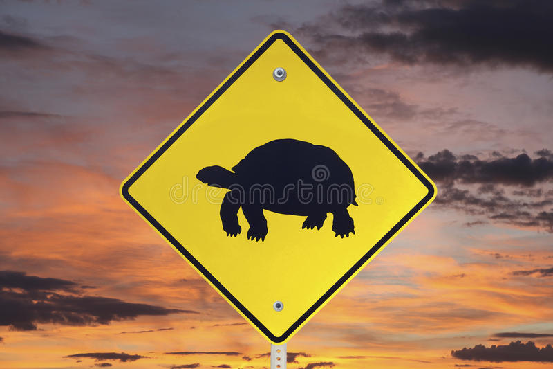Desert Tortoise Crossing Sign with Sunrise Sky stock photo