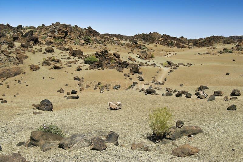 Download Desert Trail,landscape At Tenerife Stock Images - Image: 31809414
