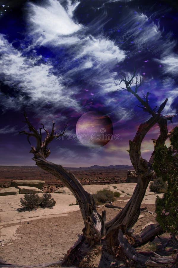 Download Desert Tree Stock Photo - Image: 16539200