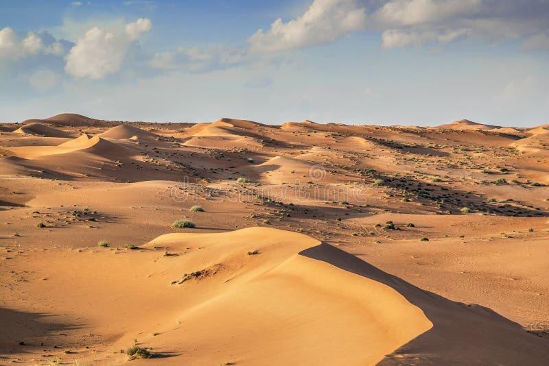 Desert Wahiba Oman stock photo