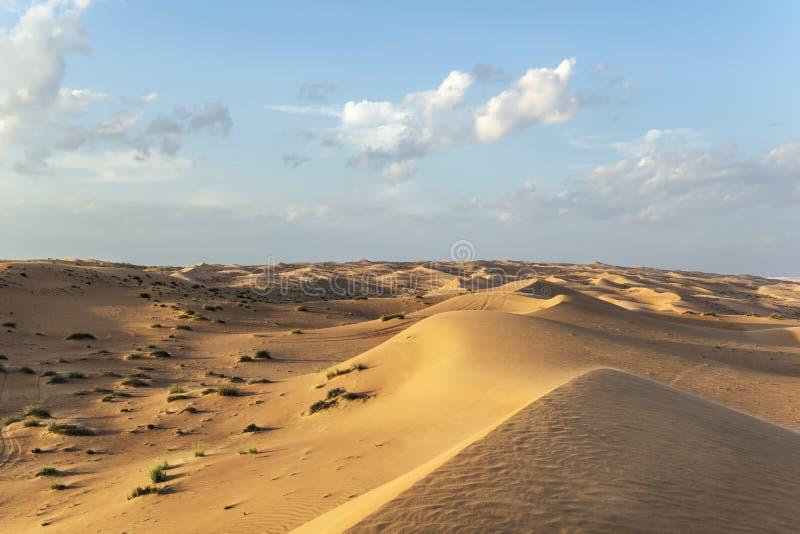 Desert Wahiba Oman stock photos