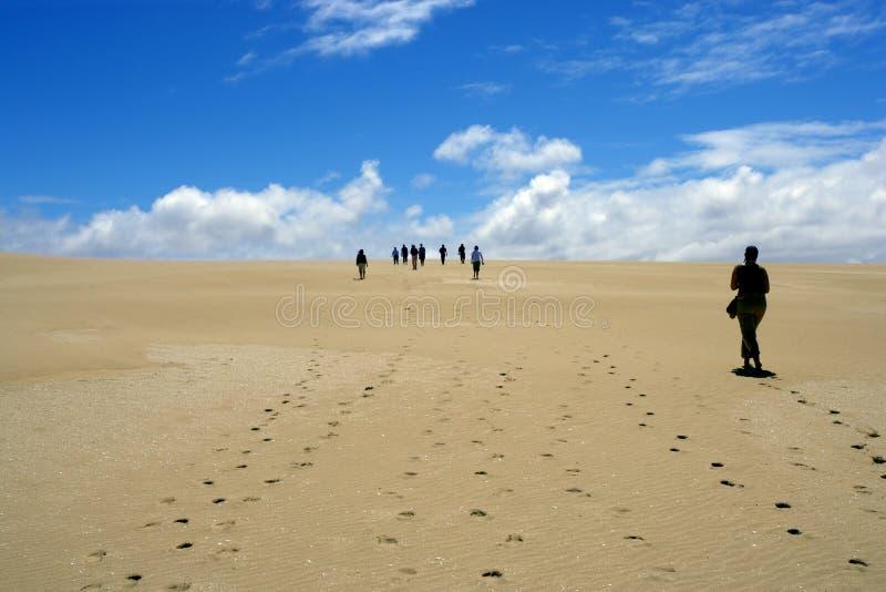 Desert walk royalty free stock photography