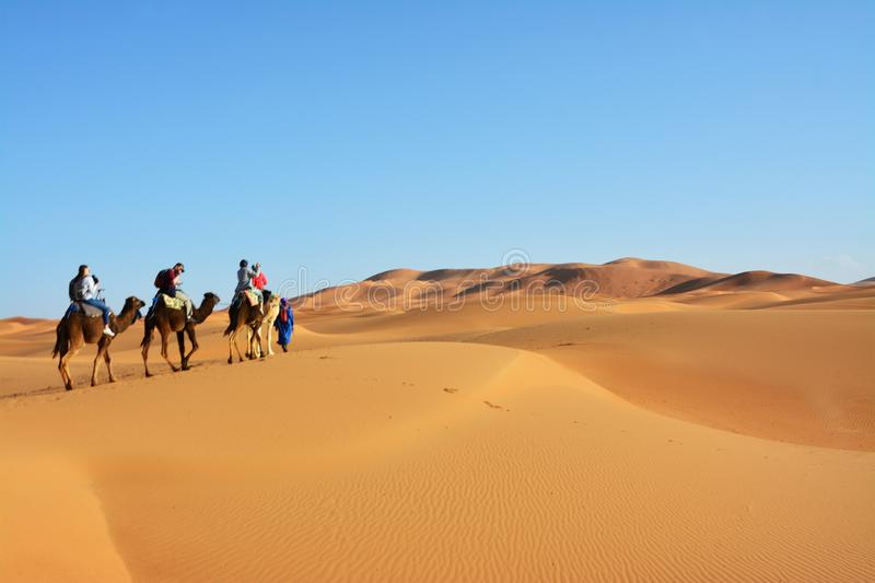 Desert, people on camels, the Western Sahara in Morocco. Africa. Desert, the Western Sahara in Morocco. Africa stock photo