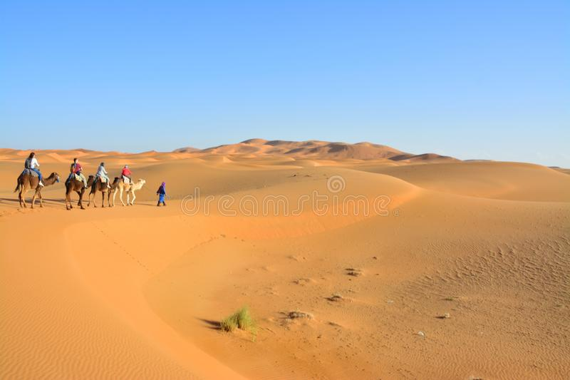 Desert, people on camels, the Western Sahara in Morocco. Africa. Desert, the Western Sahara in Morocco. Africa royalty free stock photos