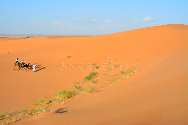 Desert, people on camels, the Western Sahara in Morocco. Africa. Desert, the Western Sahara in Morocco. Africa stock images