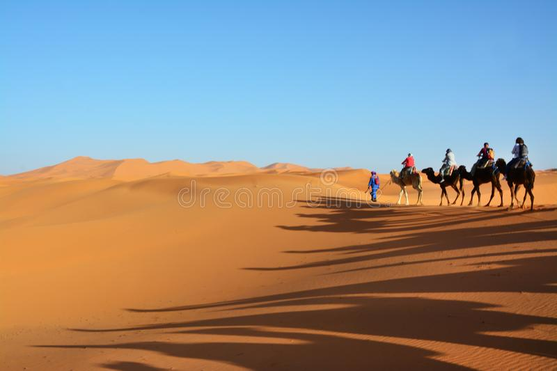 Desert, people on camels, the Western Sahara in Morocco. Africa. Desert, the Western Sahara in Morocco. Africa stock photos