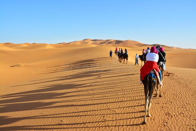 Desert, people on camels, the Western Sahara in Morocco. Africa. Desert, the Western Sahara in Morocco. Africa stock photography