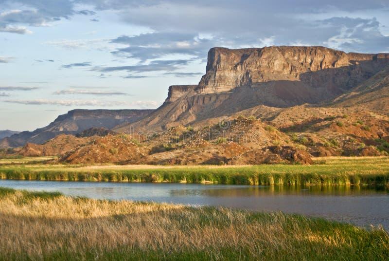 Desert Wetlands stock image