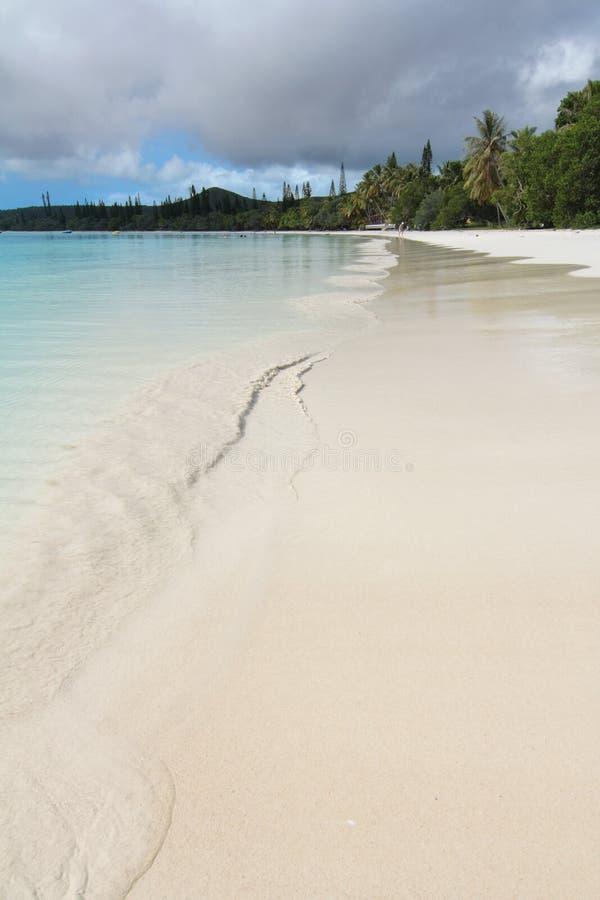 Download Desert white sandy beach stock image. Image of polynesia - 7936309